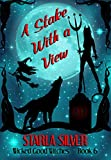A Stake With a View (Wicked Good Witches Book 6)