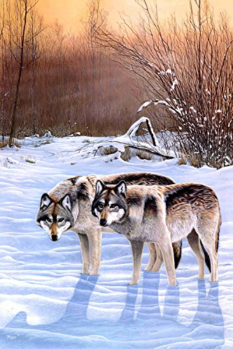 The Period A0374 Snow Forest Natural Scenery Animals Wolf. (20x30Inch)Only Canvas Oil Painting Home decoration Living Room bedroom (Frameless)
