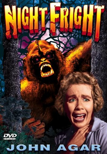 Night Fright Cover