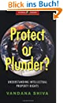 Protect or Plunder?: Understanding In...