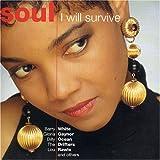 echange, troc Various Artists - I Will Survive