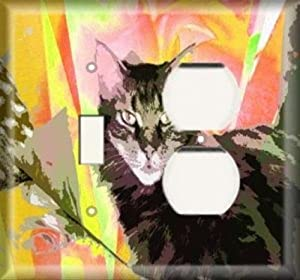 Switch / Outlet Combo Plate - Colorful Cat