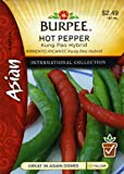 Burpee Pepper Kung Pao Hybrid 69643 (Green to Red) 25 Seeds, Appliances for Home