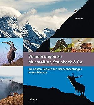 Wanderungen zu Murmeltier, Steinbock & Co