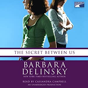 The Secret Between Us Audiobook