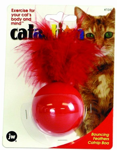 JW Pet Company Bouncing Feathers Catnip Boa Catnip Toy
