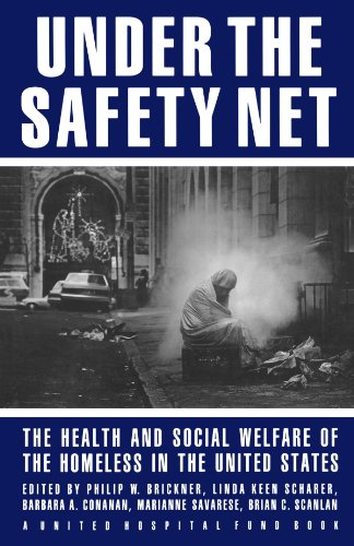 social welfare in the united states