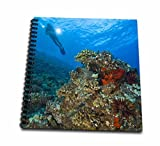 3dRose db_89946_1 Scuba divers, Molokini Crater, Maui, Hawaii - US12 SWS0128 - Stuart Westmorland - Drawing Book, 8 by 8-Inch
