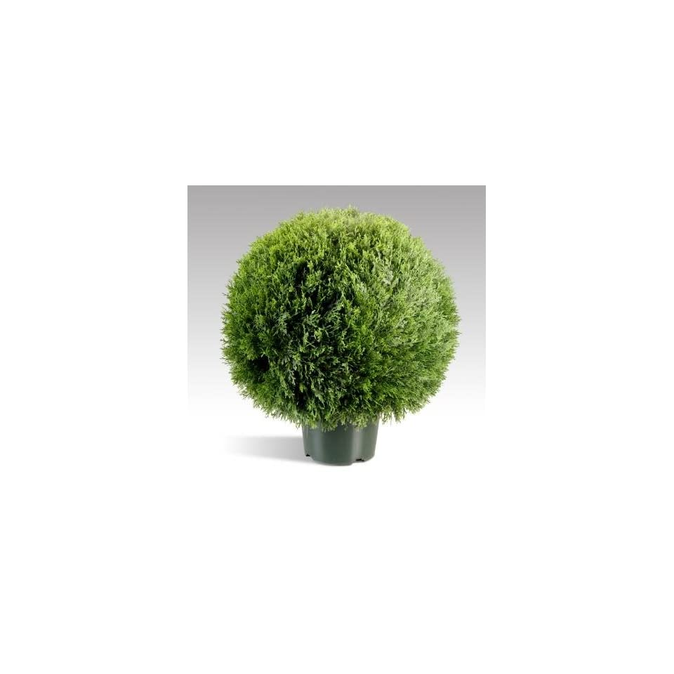 National Tree Company LCPT 700 20 20 Inch Cedar Pine Topiary in Round