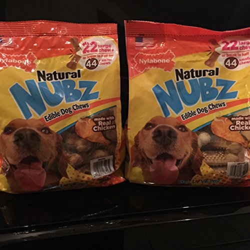 How To Store Home Made Natural Dog Treats