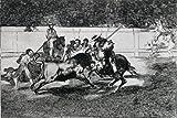 Cocina: La Tauromaquia Series Francisco Goya y Lucientes (1746-1828 Spanish) Artistica di Stampa (45,72 x 60,96 cm)