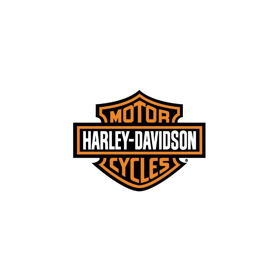 a case study on harley davidson Free essay: strategic brand management case study: harley-davidson contents question 1 3 question 2 5 1 brand elements 5 2 criteria 6 question 3 8 1.