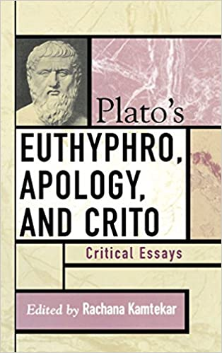 critique of plato essay