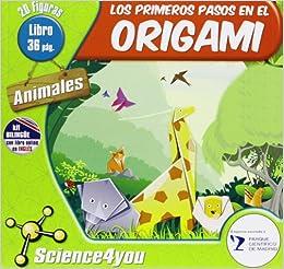Los primeros pasos en el origami: 9788415811497: Amazon.com: Books