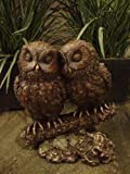 Cold Cast Broze Owl Lovers Sculpture - Perfect Gift