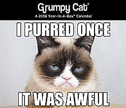 Grumpy Cat - 2016 Boxed Calendar 5 x 4in