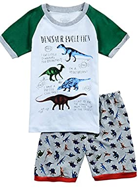 Babypajama Dinosaur Little Boys' Short Sleepwear Pajama T-Shirt & Pants 100% Cotton