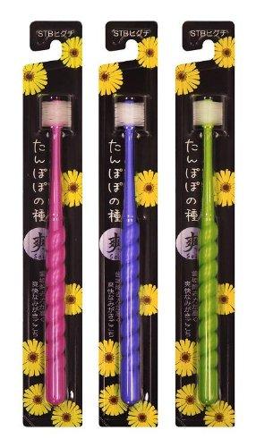 360度歯ブラシ たんぽぽの種 爽(SOH)(ブルー・グリーン・ピンクのうち1色おまかせ)