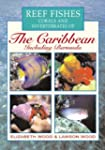 Reef Fishes Corals and Invertebrates...