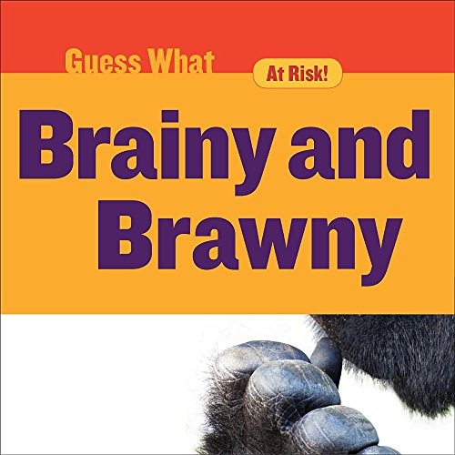 brainy-and-brawny-gorilla-guess-what