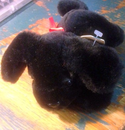 "Black Dog 9"" Plush - 1"