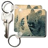 Lionhead Bunny and Teacup Digital Art by Angelandspot - Set Of 4 Key Chains