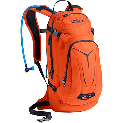 Camelbak Products M.U.L.E. Hydration Backpack,