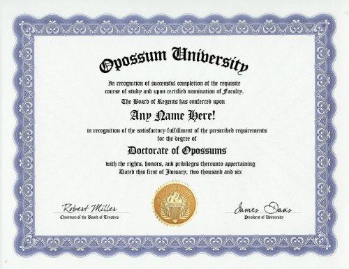 Opossum Degree: Custom Gag Diploma Doctorate Certificate (Funny Customized Joke Gift - Novelty Item)