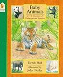 Baby Animals (074453030X) by Hall, Derek