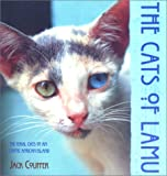 img - for The Cats of Lamu book / textbook / text book