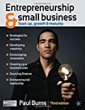 Entrepreneurship and Small Business: Start-up, Growth and Maturity (0230247806) by Burns, Paul