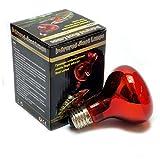 Reptile Vivarium Infra Red Heat Lamp 60W (Screw-In)