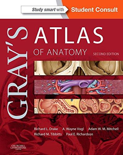 Gray's Atlas of Anatomy, 2e (Gray's Anatomy)