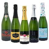 本格シャンパン製法の極上の泡5本セット((W0A599SE))(750mlx5本ワインセット)