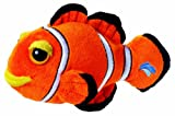 Seapals Clownfish