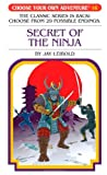 Secret of the Ninja