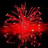 Amazon Prime Day イルミネーション 電飾 LED イルミネーション 屋外 LEDライト クリスマスツリ 飾り LED電飾 50球 50cm 複数連結可 防水(5m, Red)