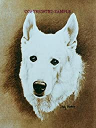German Shepherd - Portrait by Cindy Farmer, White