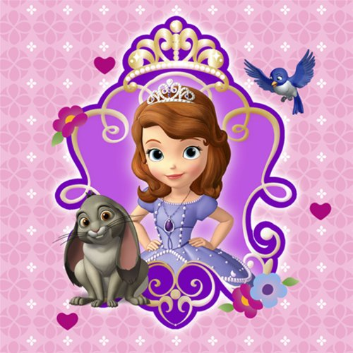 Disney Sofia the First Party Dessert Napkins 16 Pack - 1