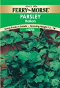 Ferry-Morse 1635 Parsley Herb Seeds, Dark Green Italian (1 Gram Packet)