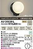 コイズミ照明 LED防雨型ブラケットマルチフラッシュタイプ(白熱球60W相当)電球色 AU38539L