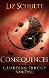 Consequences by Liz Schulte Book Review