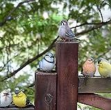Garden ornament Cute Small Bird (Six Small Birds)