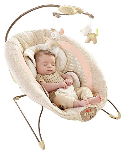Fisher Price My Little Snugapuppy Deluxe Bouncer Baby