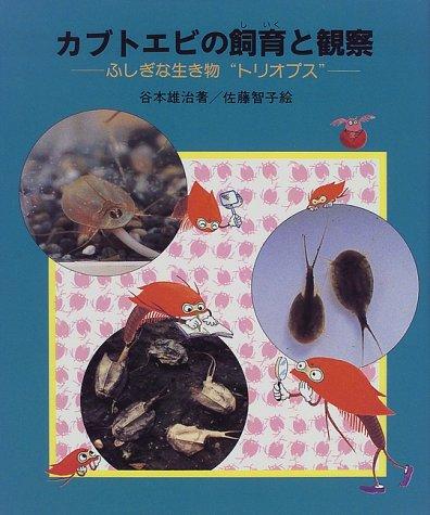 カブトエビの飼育と観察