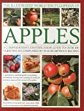 img - for The Illustrated World Encyclopedia of Apples: A comprehensive identification guide to over 400 varieties accompanied by 60 scrumptious recipes book / textbook / text book