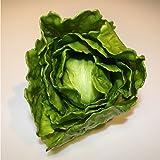 Plastic Iceberg Lettuce, green, 6