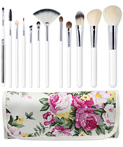 EmaxDesign 12 Piece Professional Makeup Brush Set Goat Hair Wood Handle Foundation Blending Blush Eye Face Liquid Powder Cream Cosmetics Brushes Kits With Rose Pattern Case (12 Piece Make Up Brush Set compare prices)
