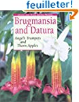 Brugmansia and Datura: Angel's Trumpe...