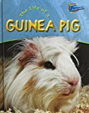 Product B00DPO8PEG - Product title The Life of a Guinea Pig (Raintree Perspectives)